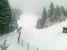 11-20  15.03.13  Сніг......!!!!
